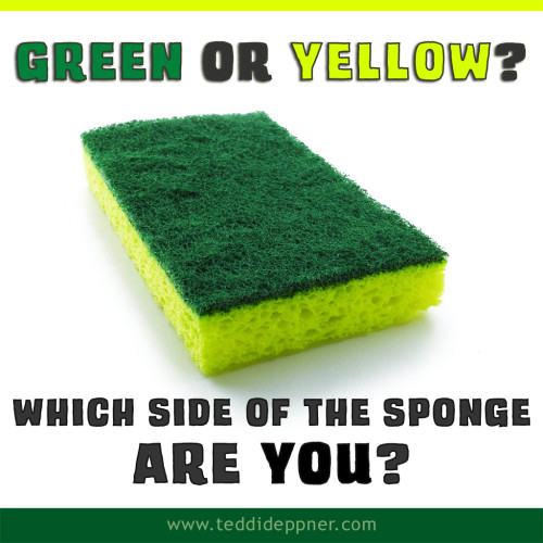sponge-green-or-yellow